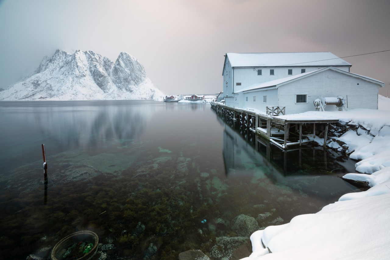 White wooden house on the shore in Lofoten, Norway